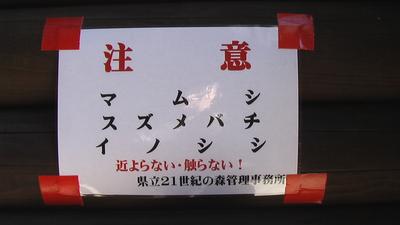 IMGA07414.JPG